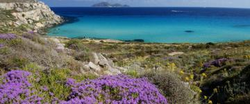IMG Ferry pour les Îles Égades 2020 – Lignes et compagnies